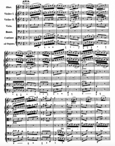 A page from the final aria in Cantata 82, in Bach's hand.